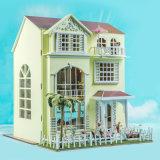 OEM 교육 발달 인형 집