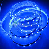 SMD 5050 5054 Flexible LED Strip Light Blanc chaud / Blanc / Cool Couleur blanche