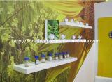 Pó nutriente da proteína do pó orgânico chinês do extrato das sementes de cânhamo
