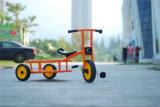 Le plastique en plastique de véhicule d'enfants joue le matériel d'intérieur de cour de jeu