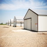 Edifício de armazenamento Prefab do metal da construção de aço dos fornecedores profissionais