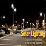 un giardino solare dei 4 tester 10W illumina gli indicatori luminosi alimentati solari dell'iarda