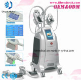 Utilisation Sculpting de STATION THERMALE de salon de clinique de corps pertinent de Cryolipolysis amincissant la machine