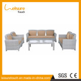 Mobília ao ar livre do lazer da combinação ajustada do sofá do Rattan da arte de pano