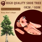 عالية تصميم أرض اثنان أنابيب حذاء ملحقة, حذاء شجرة