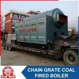 De professionele Boiler van het Hete Water van de Brandstof van de Fabrikant Dubbele