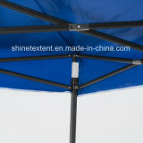 10*10FTによってはおおいの折るテントの昇進の表示おおいが現れる