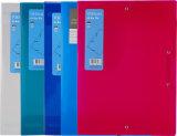 Прозрачный случай документа карманн архива пряжки цвета A4 с эластиком