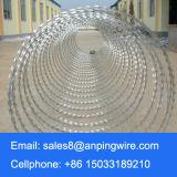 550mmの直径によって電流を通される平らな覆いアコーディオン式かみそりワイヤー