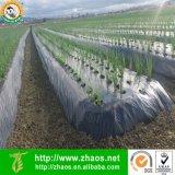 Pellicola agricola nera di plastica del PE di alta qualità con resistente UV