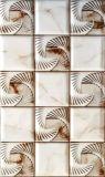 艶をかけられた陶磁器の壁のタイル(3169)