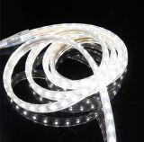 보석 진열장 LED 가벼운 선형 빛