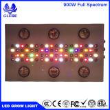 900W de Groenten van de hydrocultuur de Volledige Installatie van het Spectrum Lichte leiden kweekt van de MAÏSKOLF van de Hoge Macht groeien Licht