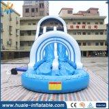 娯楽のための興味深く膨脹可能で長いスライド水おもちゃのスライド