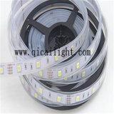 중국 공급자 두 배 줄 24V 5050 LED 빛 테이프