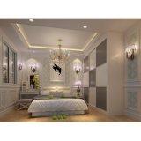 Grandshine passte Schlafzimmermöbel Entwurfs-Schlafzimmer-Wandschränke an