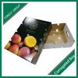 Cajas parte superior e inferior de frutas coloridas