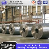 Berufslieferant des galvanisierten Stahlringes