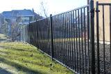 Rust-Proof покрынная порошком загородка сада для обеспеченности и украшения