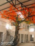 China-Zubehör-Dekoration-künstliches Ahornholz-trockener Bonsais-Baum