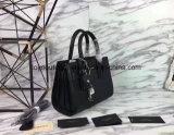 De Handtas van de Zwerfster van vrouwen