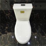 Foshan-gesundheitliche Waren 4D, die keramische Toilette leeren