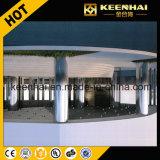 Revêtement décoratif de fléau d'acier inoxydable de Customed