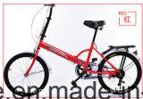 شعبيّة رخيصة يطوي جيب درّاجة ([ل--83])