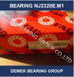 Zylinderförmiges Rollenlager Nj2320 E.M1 mit Messingrahmen