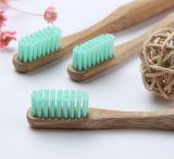 Toothbrush di bambù biodegradabile all'ingrosso di vendita caldo (BC-T1025)