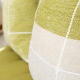 Cortinas llanas lujosas modificadas para requisitos particulares de la calidad de la talla con bordado