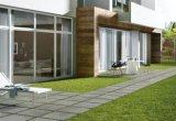 Kleber-Art glasig-glänzende Porzellan-Fußboden-Fliese für Fußboden und Wand (FN03)