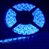 3528 120LED/M 12V IP65 White LED Flexible Strip