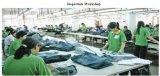 Женщины фасонируют тощие миниые джинсыы джинсовой ткани кальсон не доходя Изготовлением