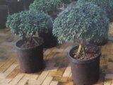反紫外線15.7L耐久のプラスチック植木鉢(4.12ガロンボリューム)