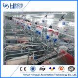 Het Werpen van de Zeug van de Apparatuur van de Varkensfokkerij van het Ontwerp van de varkensfokkerij Krat voor Verkoop