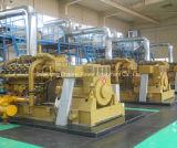 세륨 ISO에 의하여 증명된 생물 자원은 Cummins Engine를 가진 발전기 200kw를 가스를 발산한다