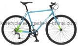 Geschwindigkeit 700c 9 Cr-MO örtlich festgelegtes Gang-Fahrrad-/Utility-Straßen-Stahlfahrrad für erwachsenes Fahrrad und Kursteilnehmer/Cyclocross Fahrrad/Straße Laufenfahrrad/Lebensstil-Fahrrad
