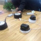 Lampadina di alto potere LED per qualsiasi lampione di figura