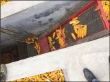 Essiccatore della cariosside di granoturco dell'acciaio inossidabile