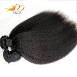 100%の加工されていないバージンの人間の毛髪のブラジルのねじれた直毛