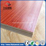 Eucalipto 100%/vidoeiro Okoume/madeira compensada da melamina para a mobília interior
