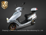 Electroplated Rack를 가진 800W Front Disc Brake Brushless Motor Electric Scooter