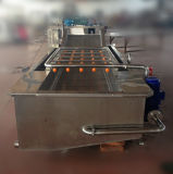 Food Industry를 위한 자동적인 Vegetable Washing Machine