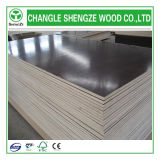 18mm 11 Layers Phenolic Shuttering Plywood