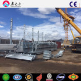 강철 구조물 작업장 또는 강철 구조물 건물 (SSW-168)