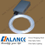 De Optische Lichte Uitrustingen van de vezel voor de Bouw van Projector