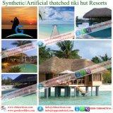 Chambre couverte de chaume synthétique de mer de ressource de chaume des Maldives Bali Hawaï de hutte artificielle de Tiki