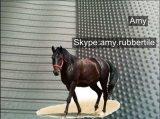 Non циновки стойла лошади пола коровы выскальзования прочные стабилизированные