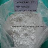 بيضاء مسحوق [بنزوكين] [هكل] [أنسثتيك] [أنودن] [بنزوكين] هيدروكلوريد 23239-88-5